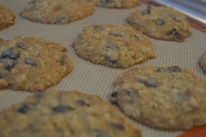 Mary's first day, oatmeal cookies 013