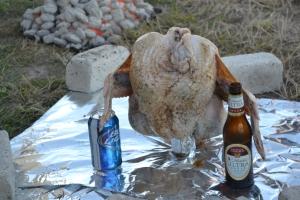 trashcan turkey, pheasant phantazmagoria 021