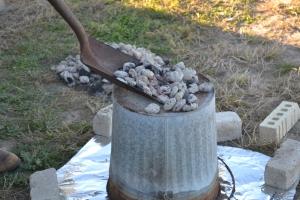 trashcan turkey, pheasant phantazmagoria 025