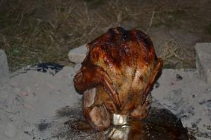 trashcan turkey, pheasant phantazmagoria 034