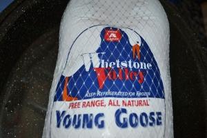 goose, nilgai, 2015 001