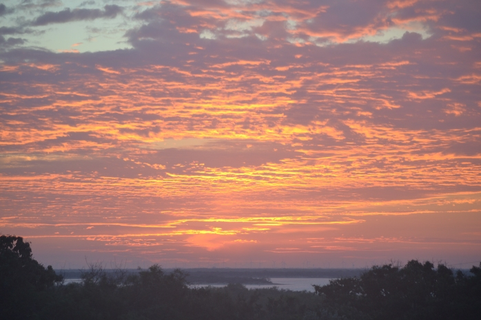 sunrise and Christmas 001