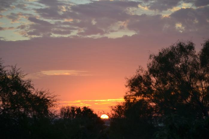 sunrise and Christmas 006